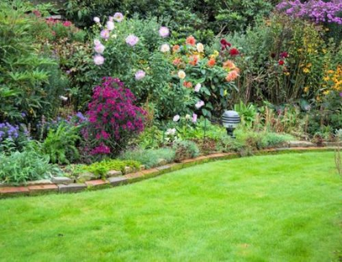 How to Make the Most of Your Garden